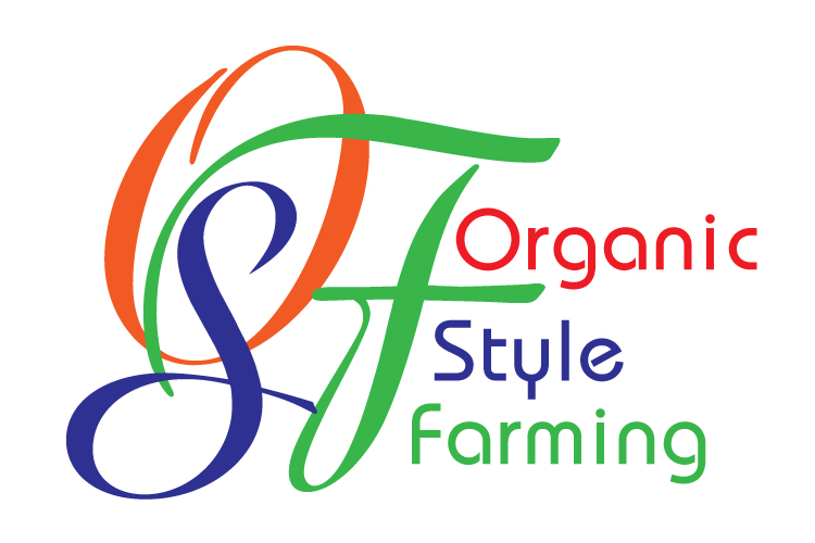 Branding_OSF_logo design